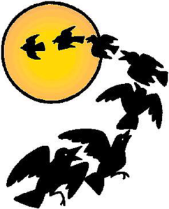 cartoon+crows+and+moon